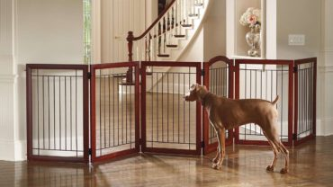 How To Clean Dog Cage or Crate